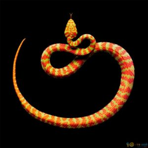 snakes_5