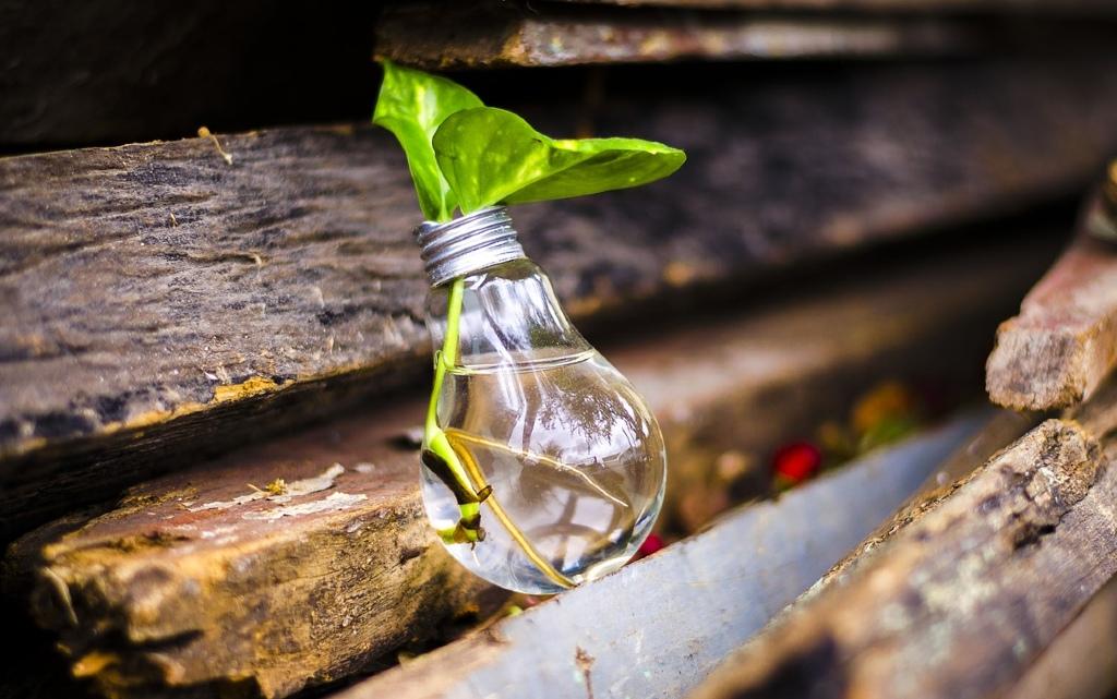 10 начина да живеем в симбиоза с природата