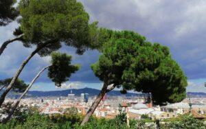 10 места, които си заслужава да посетите в Барселона