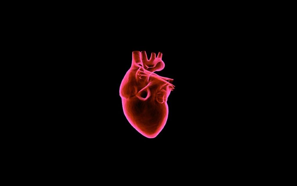 10 любопитни факта за сърцето